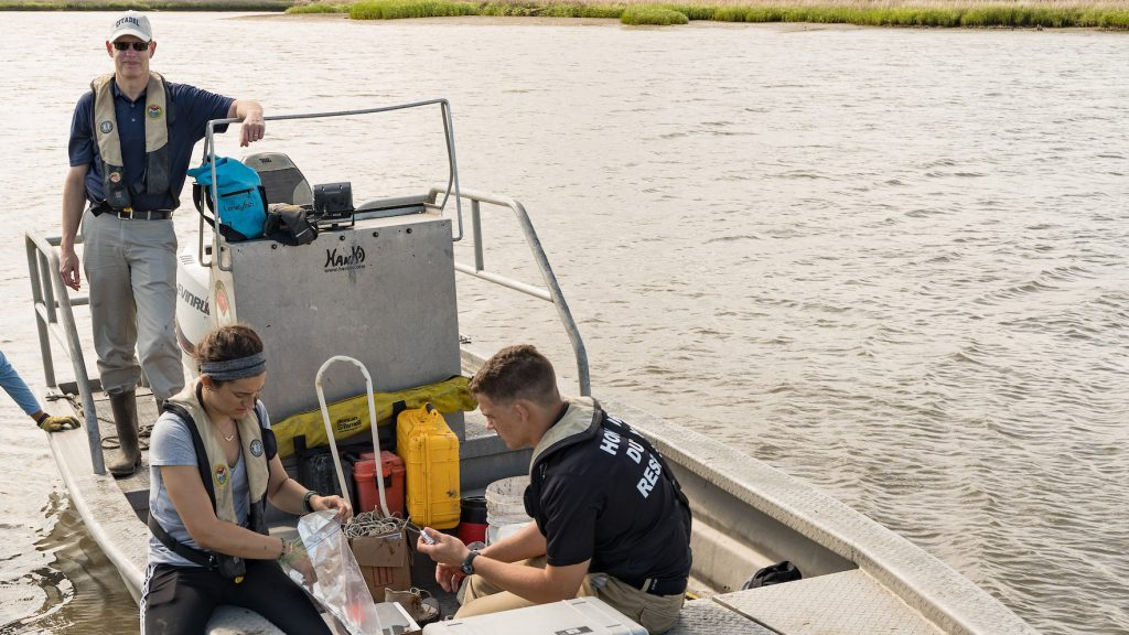 Oyster Microplastic Research in a boat on the river