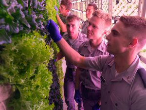 Cameron Brown Inside Sustainability Farm