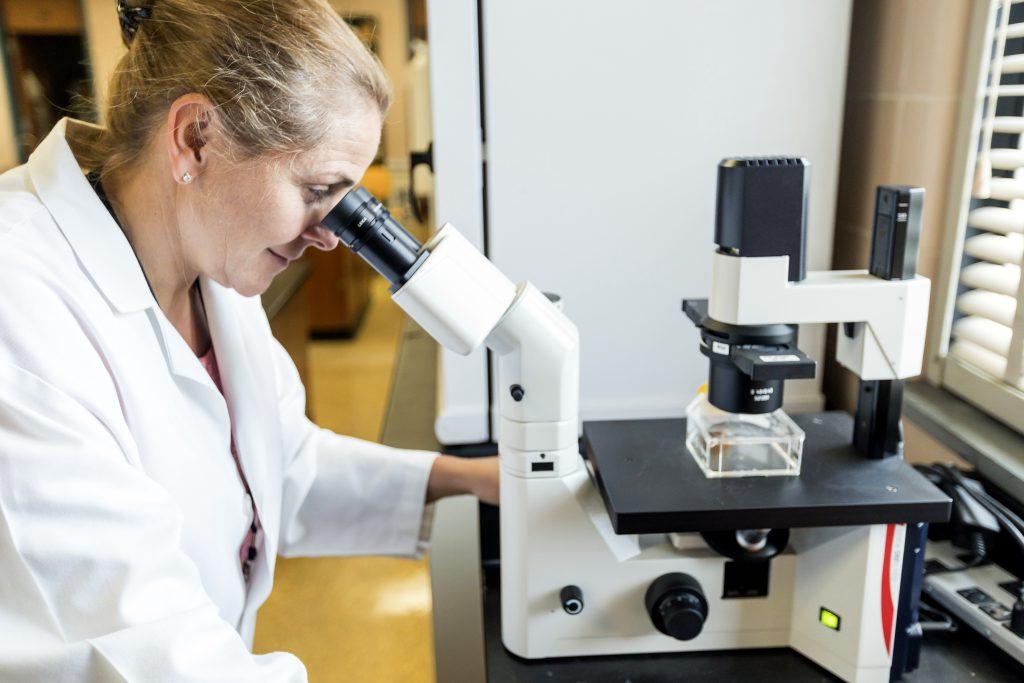 Dr. Kathy Zanin, Citadel biology professor and immunology researcher