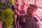 Cadets look at lettuce in the sustainable farm container on The Citadel campus
