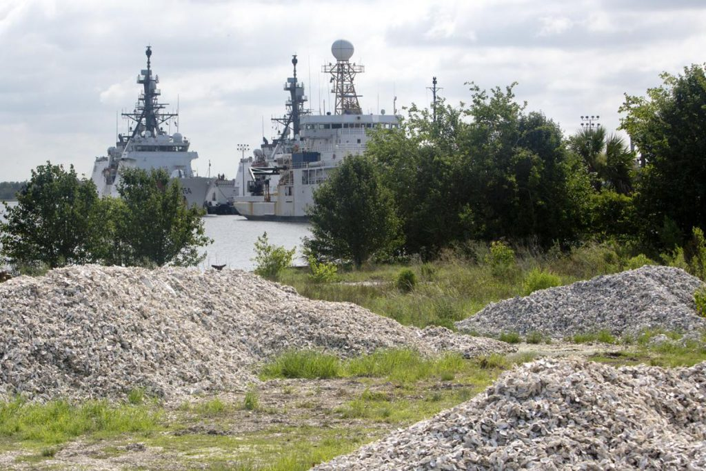Oyster shells piled at Veterans Terminal in North Charleston. (Courtesy: Gavin McIntyre, The Post and Courier)