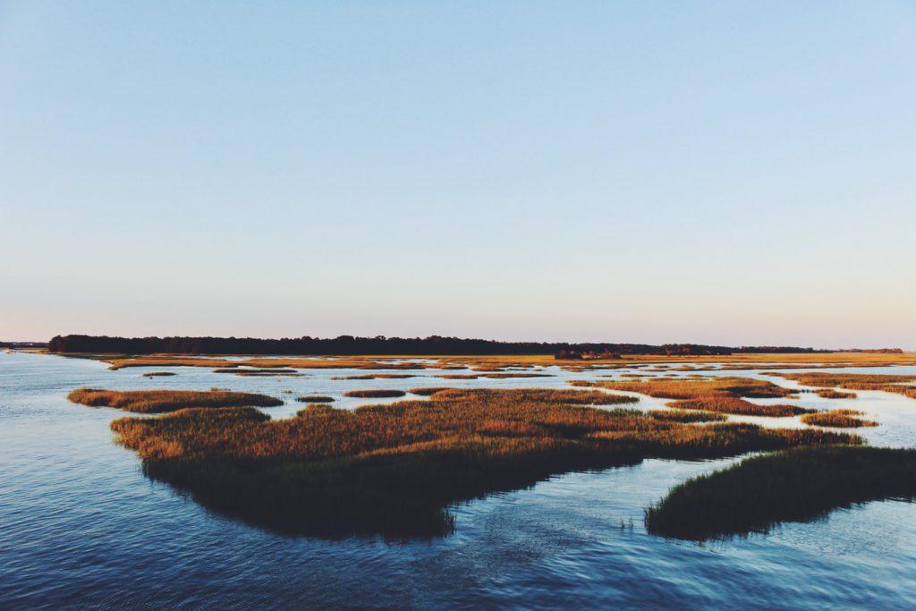 The Ashley River at Folly Beach in Charleston SC courtesy of Unsplash